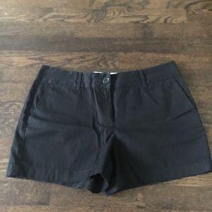 Loft - Riviera Shorts